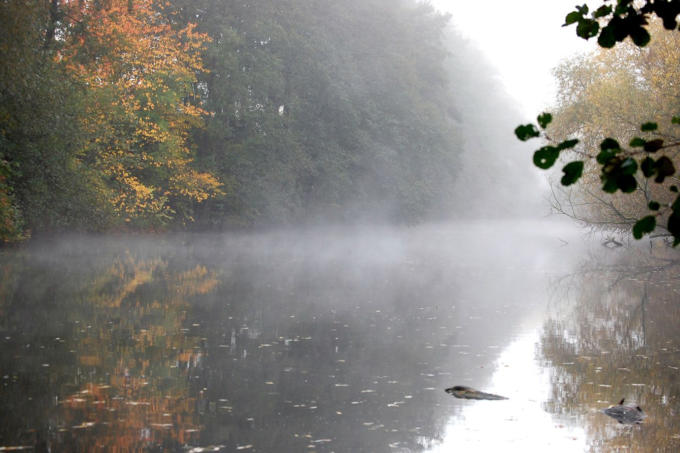 Autumn morning: after the first cold night waft of mist rise from the water.