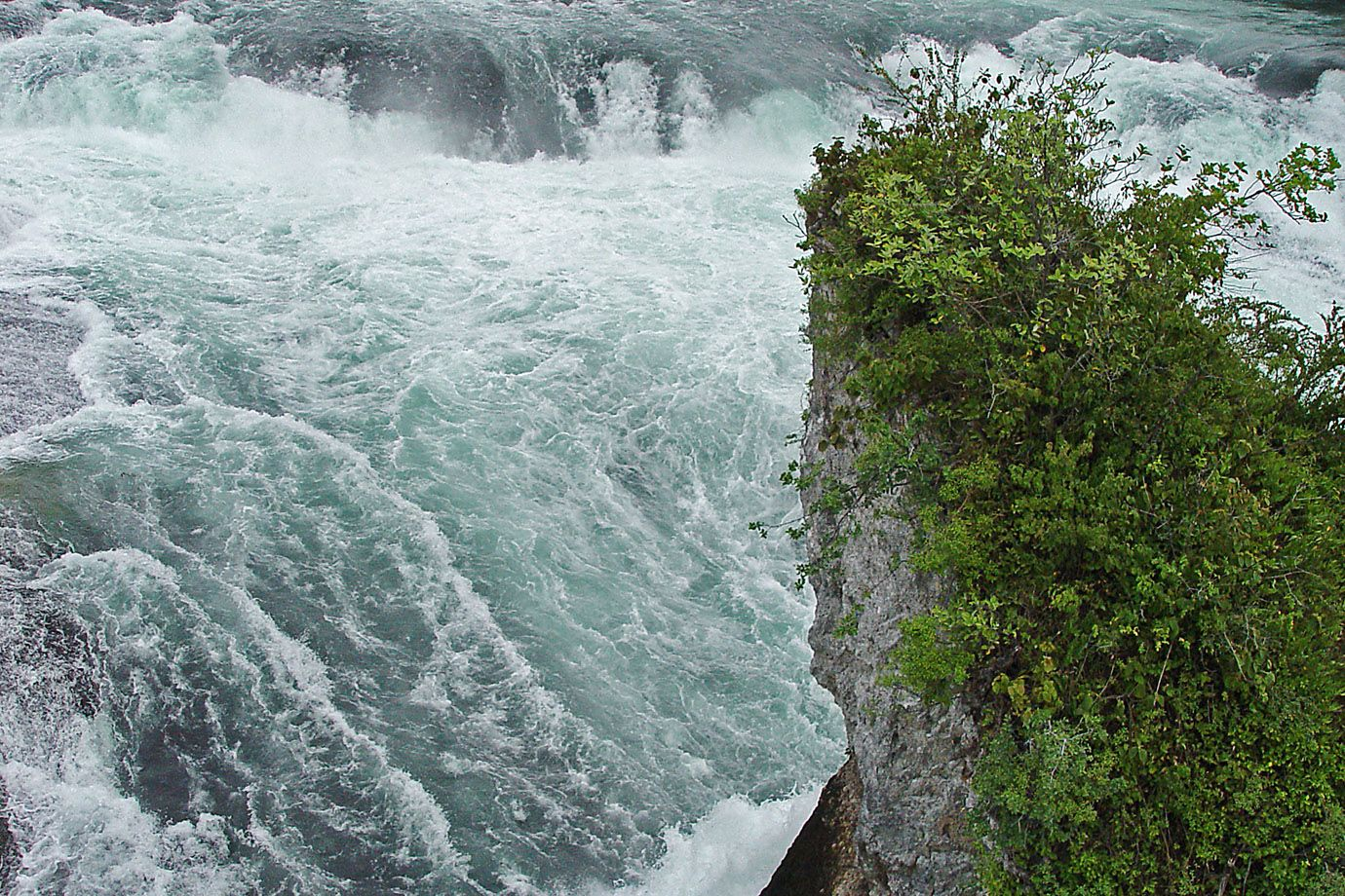 Rhine Falls: strength, motion and freshness